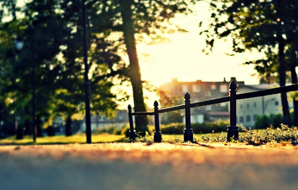 Picture greens, grass, leaves, the sun, macro, trees, nature, house, Park, tree, widescreen, Wallpaper, the fence, …