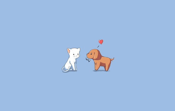 Picture cat, animals, love, gift, dog, fish, love, blue background