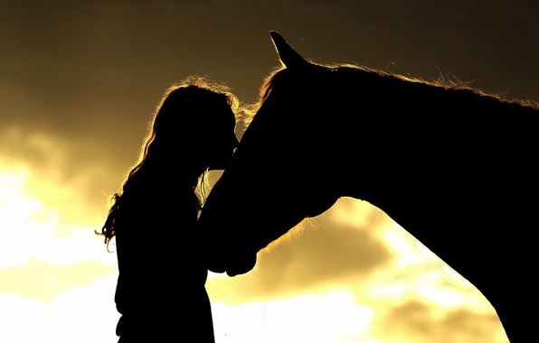 Picture girl, horse, silhouettes