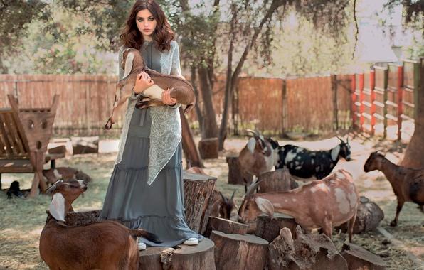 Picture photoshoot, Grey, goats, Odeya Rush