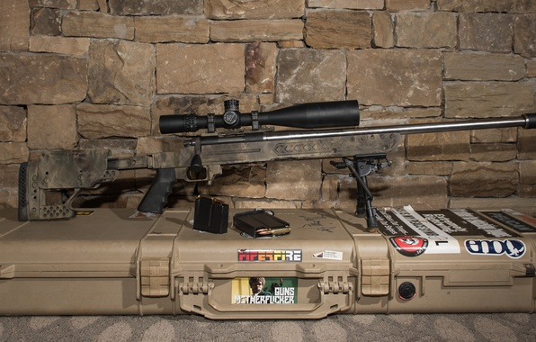 Picture weapons, background, optics, sniper rifle