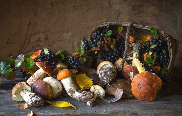 Picture autumn, basket, mushrooms, Aronia