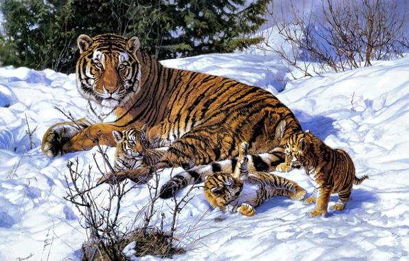 Picture winter, snow, art, tigers, tigress, the cubs, John Banovich