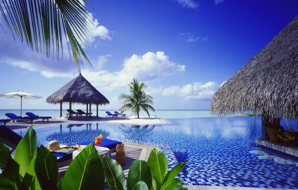 Picture palm trees, the ocean, pool, Bungalow
