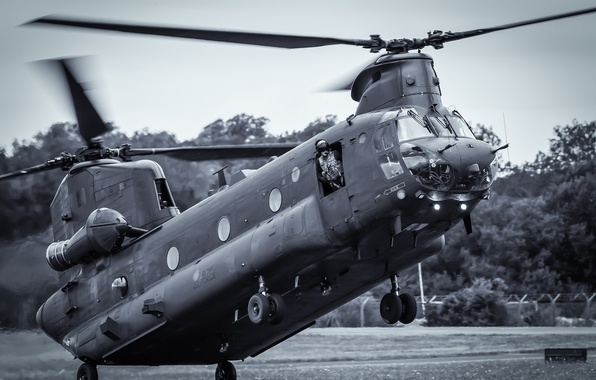 Picture helicopter, transport, military, Chinook, CH-47