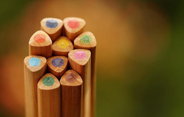 Picture color, pencil, colored pencil