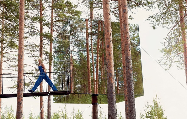 Picture forest, pine, Vogue, Karlie Kloss, mirror cube