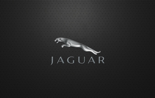 Picture Jaguar, company, jaguar, British, automotive