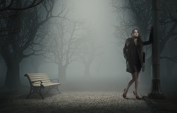 Picture girl, night, Park, bench