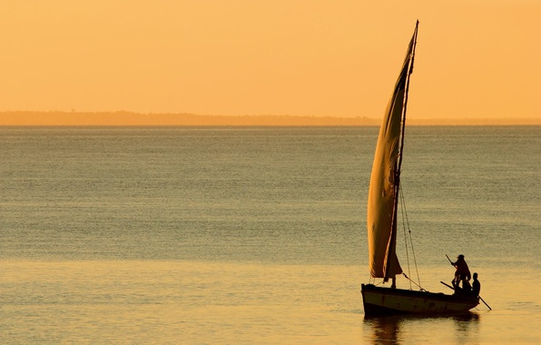 Picture sea, water, people, the ocean, the wind, landscapes, boats, sails