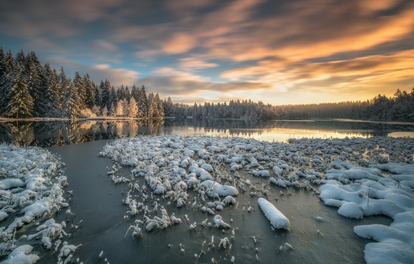Picture winter, forest, snow, lake, Switzerland, Switzerland, Canton of Jura, the Canton of Jura