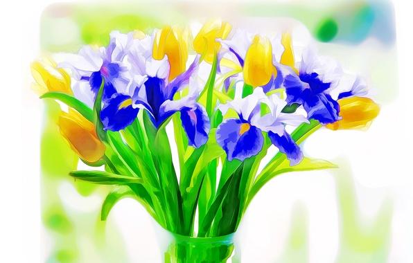 Picture flowers, Tulip, bouquet, iris