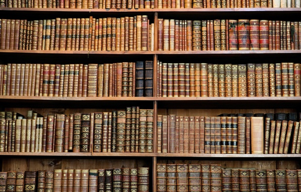 Picture wood, books, library, hard cover
