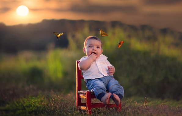 Picture butterfly, sunset, boy