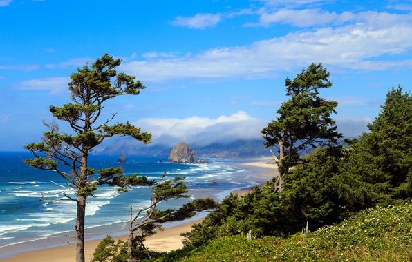 Picture sand, sea, beach, the sky, clouds, trees, stones, coast, surf, USA, Oregon, reefs