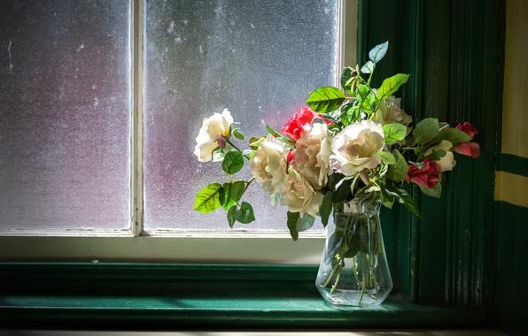 Picture roses, bouquet, window, vase