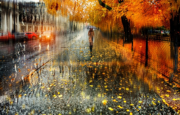 Picture wet, autumn, girl, drops, the city, street, foliage, umbrella, Peter