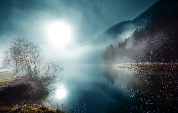 Picture night, fog, river, the moon