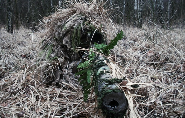 Picture optics, sniper, camouflage, sight, rifle