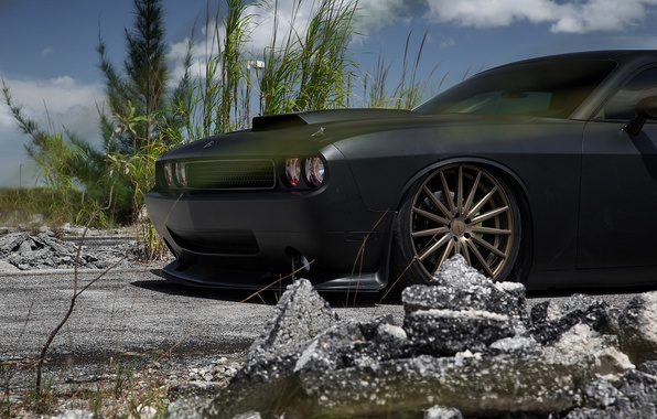 Picture car, black, tuning, Matt, dodge, challenger, srt8, rechange