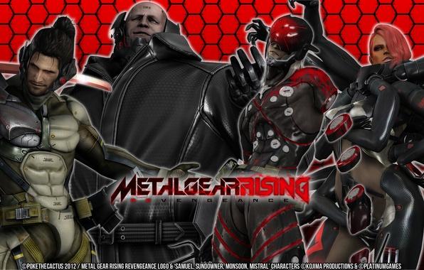 "Picture game, Wallpaper, Metal Gear Rising, Revengeance, ""Doom"", Cyborg Ninja, Desperado Enforcement Group, Sundowner, Mystral, MGR, …"