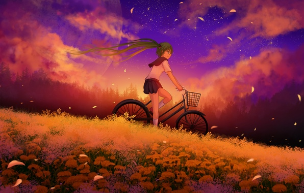 Picture the sky, girl, clouds, sunset, flowers, bike, the moon, anime, petals, art, vocaloid, hatsune miku