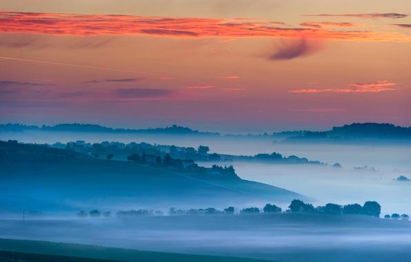 Picture the sky, light, fog, morning, village