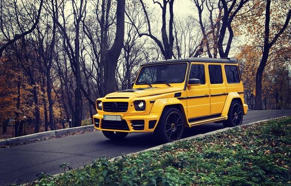 Picture Yellow, Autumn, Mercedes, Mercedes Benz, brabus, SUV, G63