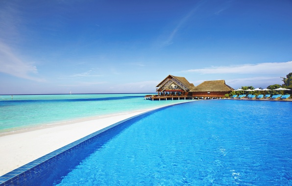 Picture the ocean, pool, The Maldives, the hotel