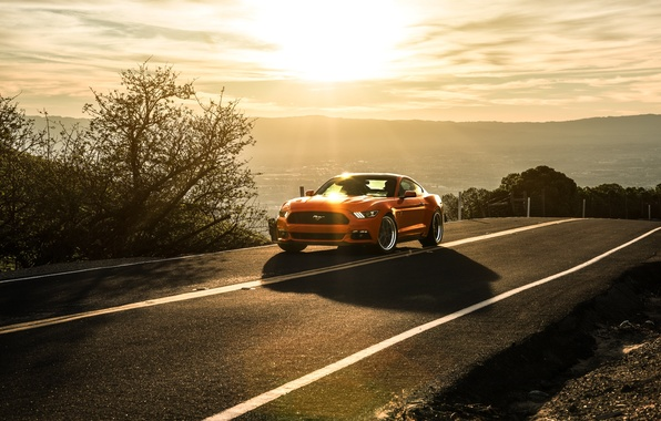 Picture Mustang, Ford, Orange, Landscape, Sun, Sunset, California, Mountains, 2015, Aristo Collection