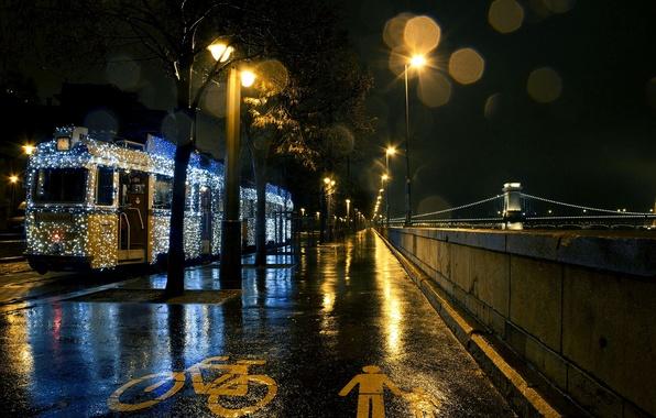 Picture road, asphalt, night, the city, river, lighting, lights, tram, garland, Hungary, Hungary, Budapest, The Danube, …