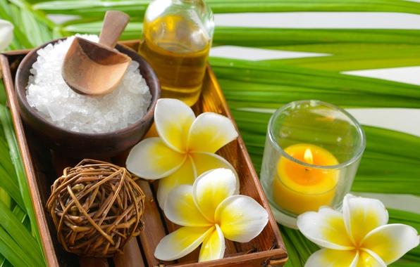 Picture spa, salt, oil, zen, plumeria