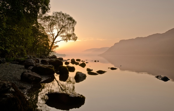 Picture forest, the sky, the sun, mountains, fog, river, stones, haze
