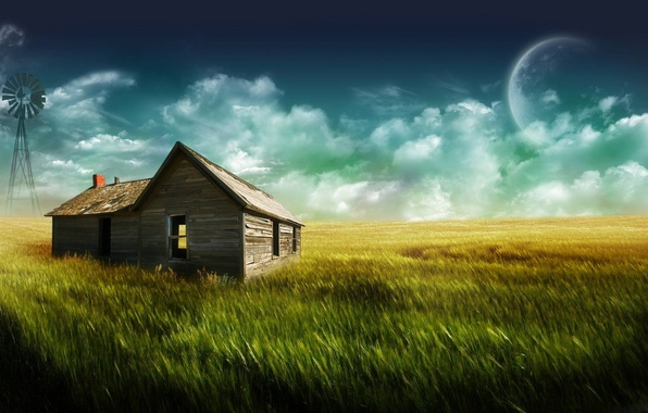 Picture grass, house, the moon