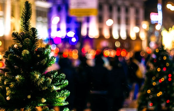 Picture the city, lights, tree