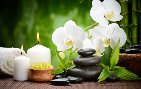 wallpaper flower stones candles bamboo black orchid flowers