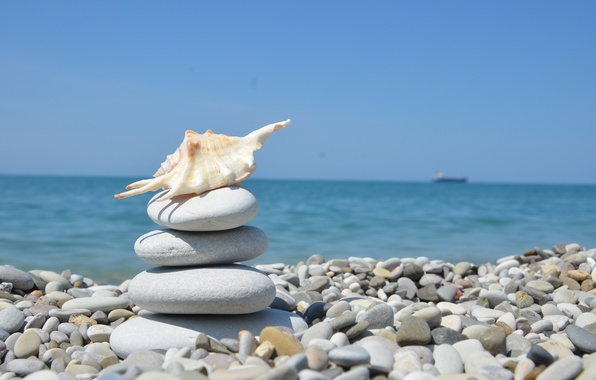 Picture sea, pebbles, shell