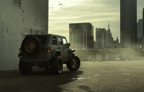 Picture The city, Ass, Jeep, SUV, Nighthawk, Wrangler, Jeep, 2014