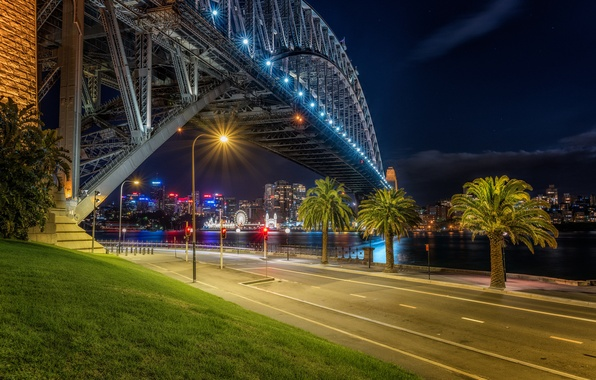 Picture road, night, bridge, lights, river, palm trees, Sydney, Australia