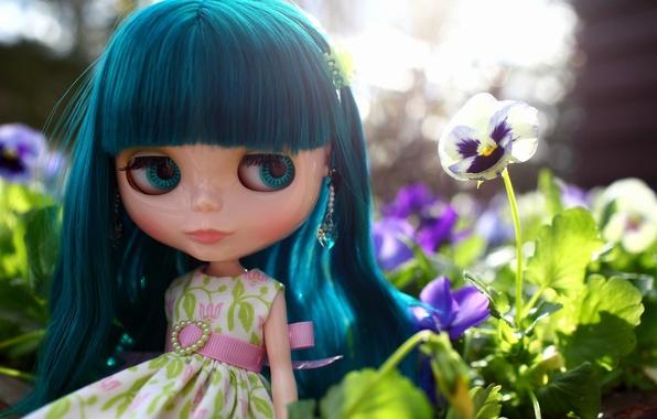 Picture flower, look, hair, doll, dress, Pansy, bangs, viola