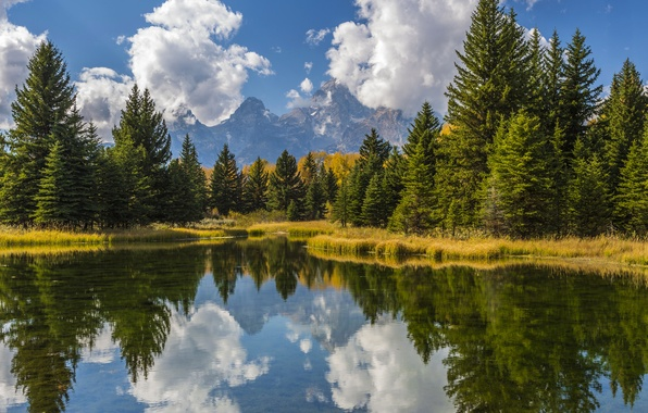 Picture the sky, water, the sun, clouds, trees, mountains, reflection, USA, forest, Grand Teton, Grand Teton …
