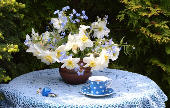 Picture tea, bouquet, Cup, candy, Narcissus, forget-me-not