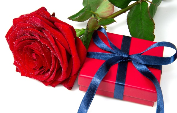 photo wallpaper red holiday box gift widescreen wallpaper rose
