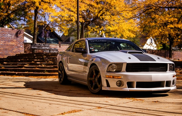 Picture Mustang, Ford, Mustang, 2012, Ford, Roush, 427R