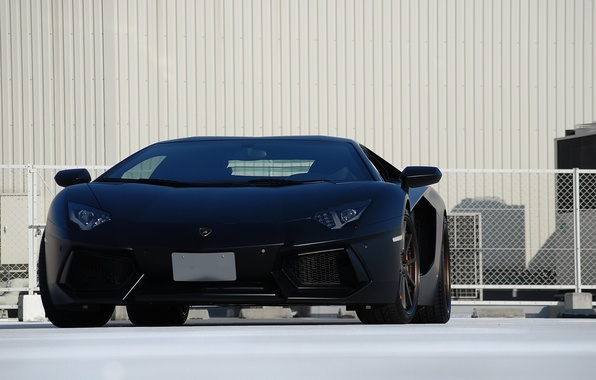 Picture the fence, lamborghini, the front, aventador, lp700-4, aventador, white wall, matte black, black matteламборгини