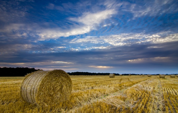 Picture field, the sky, clouds, clouds, England, the evening, harvest, hay, bales, UK, straw, blue, County, …