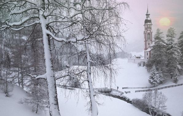 Picture winter, Austria, Tyrol