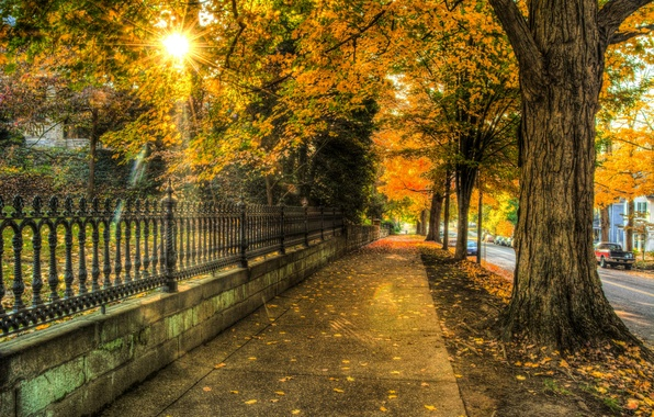 Picture autumn, leaves, trees, nature, city, the city, house, street, house, architecture, trees, nature, autumn, leaves, …