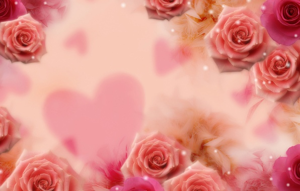 Picture flower, flowers, background, heart, roses, sequins, heart