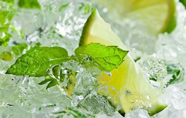 Picture ice, lime, citrus, mint leaves